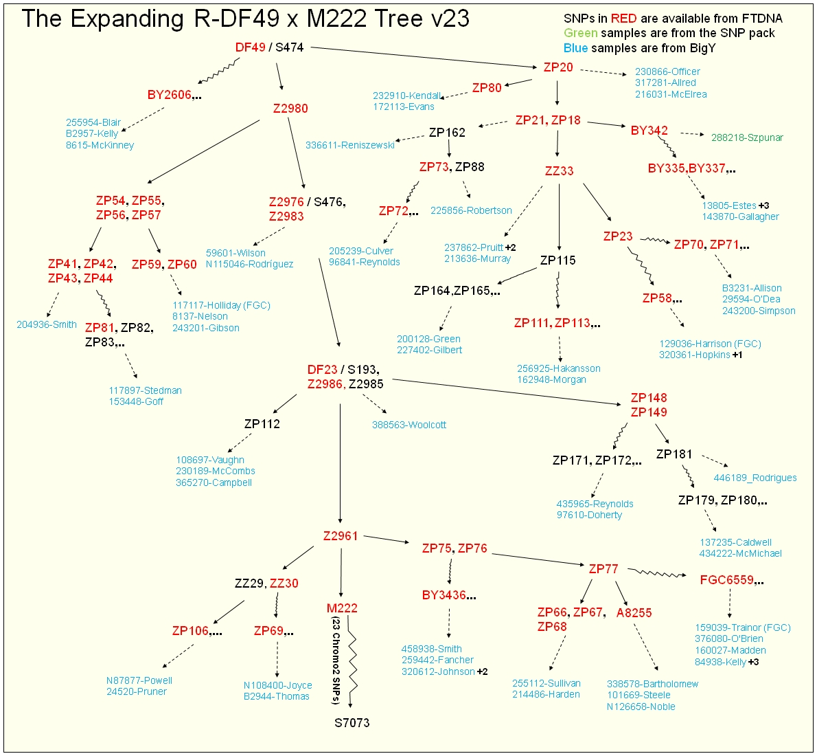 R1b-DF49_Tree